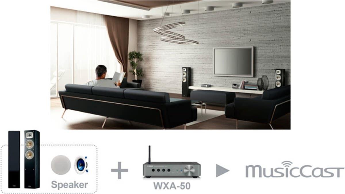 YAMAHA 2 1-Channel MusicCast Zone Amp (WXA50B)