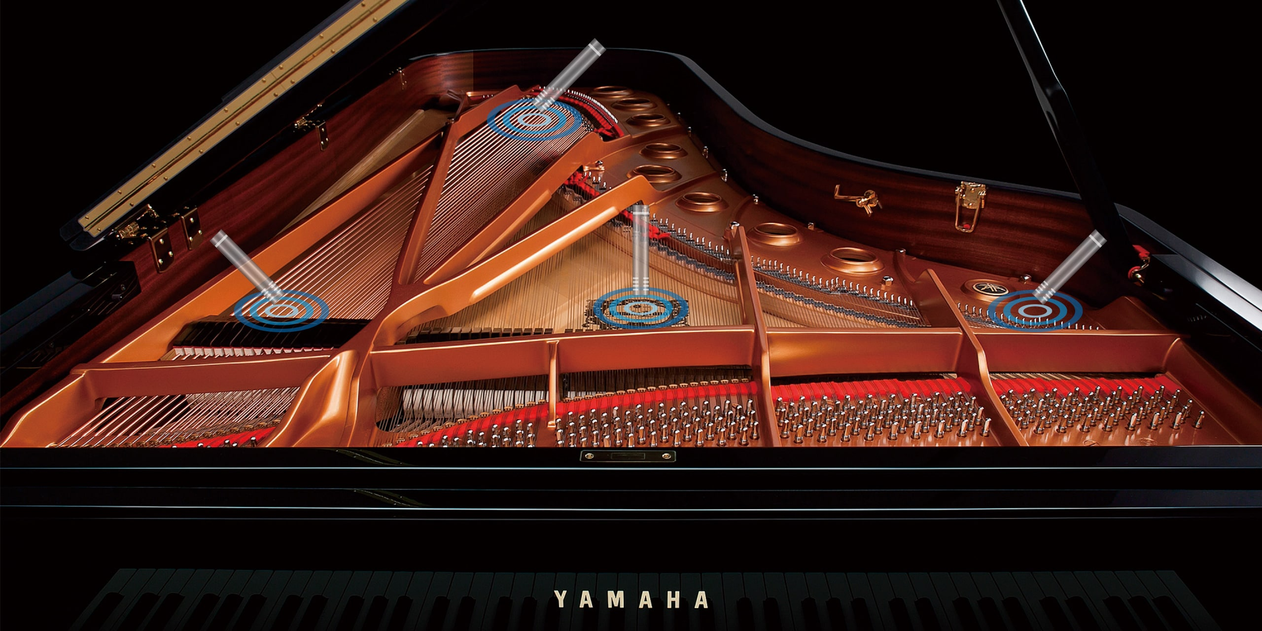 Photo Each piano was meticulously sampled using our proprietary Spatial Acoustic Sampling process